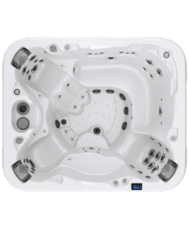 Executive® Spa from Dimension One Spas